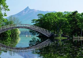 Japán vízkúra, vízivás