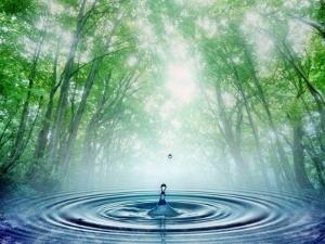 a víz fontossága