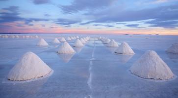 salt - sófajták